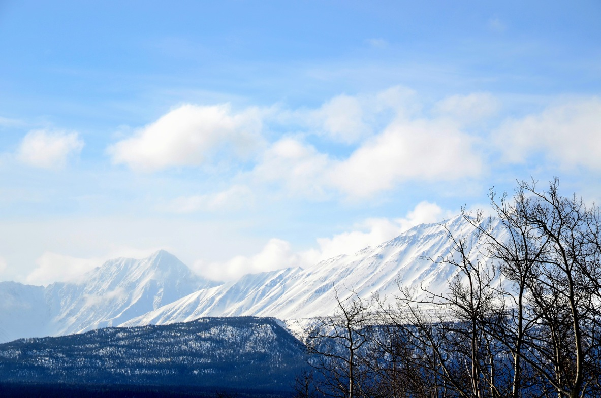 Haines Junction 2